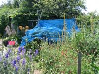 Manor Gardens Allotments